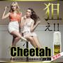Cheetah(チーター)
