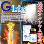 Gibbs (ギブズ)