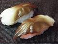 SKN000047Bにぎり寿司鳥貝大