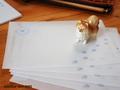 PAW柄トレーシングペーパー封筒