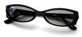 【「仮面ライダー電王」で使用したメガネのサングラスバージョン】No NAME 4673 ブラック×TALEX トゥルービューノンコート