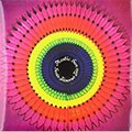 Svein Finnerud Trio / Plastic Sun (ODINLP9558) LPレコード