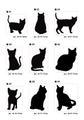 猫ステッカーA・黒