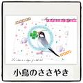 小鳥のささやきポストカード(CRM0021)