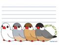 文鳥4ならびメモ帳(FTO0003)