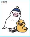 ダイカットステッカー(白文鳥ヒナ3/アヒル)