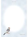 ポストカード「GOMA SHIO」(TTP0007)