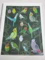 A4クリアファイル「鳥づくし撫子」(SAT3003)