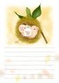 栗の子文鳥便箋(TTP0018)