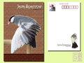 ポストカード「桜文鳥5」(DGY0009)