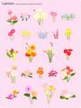 No.650 お洒落な花のイラスト 【AI】