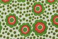 スウェーデンで見つけた赤×緑のお花柄のレトロファブリック(147.5×100cm)