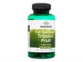Swanson/フルスペクトラム・トリブラスフルーツ(Tribulus Fruit) 500mg