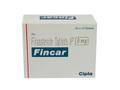 フィンカー(Fincar)
