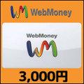 WebMoney(3,000円)