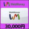 WebMoney(30,000円)