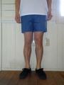 SALVAGE PUBLIC(サルベージパブリック)Cromwell, Ripstop Shorts