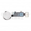 iPhone 7 7P ホームボタンアセンブリ 「 ご注意:指紋認証・ホーム機能NG」- シルバー