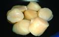 6 標津産刺身用のホタテ貝柱(1Kg)