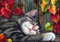 【1-39】A3 お昼寝中の猫