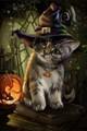 【1-15】A3サイズ ハロウイン帽子をかぶった子猫