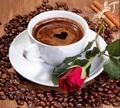 初心者応援!A4額付き【7-1】square コーヒーカップと赤い薔薇