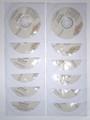 DVD-R MegaSceneryEarth 4X Florida(FSX)