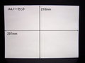 ノーカットタックシールA4サイズ 10枚パック【送料無料】