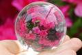 極上!完全透明!最高品質マニカラン水晶56mm丸玉【最高品質・超透明・超光沢・超激レア】