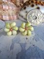 Mongo Shell Flower pin pierce No,12