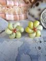 Mongo Shell Flower pin pierce No,15