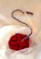 胎児付属物        (胎盤・羊膜・臍帯)