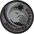 ニュータ 第305飛行隊 F-15 E/D パッチ