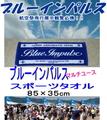 定番! 【今治タオル】 ブルーインパルス スポーツタオル