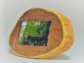 木製フォトフレーム KG版はがきサイズ壁掛け対応 No.2 エンジュ斜め輪切り(KG-20)