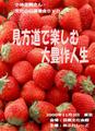 小林正観さん 講演DVD 「見方道で楽しむ大豊作人生」