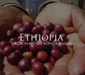 エチオピア イルガチェフェG/3 コンガ ナチュラル 200g