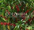 コロンビア サントゥアリオ ブルボン 200g