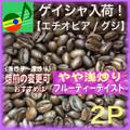 エチオピア・ゲイシャ【M/2P】
