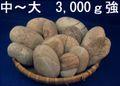 姫川薬石【お徳用セット】A3,000g      3,000g