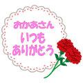母の日(いつもありがとう白)
