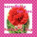母の日(Mother'sDay)