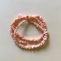 本枝サンゴ (ピンク)