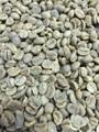【生豆】ブラジル(有機JAS) 1kg