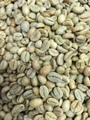 【生豆】エチオピア(ベレテ・ゲラ)(自然生育)1㎏