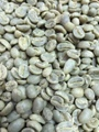 【生豆】ウガンダ(有機JAS) 2kg