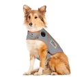 Thundershirt XLサイズ