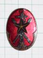 在郷軍人会役員之徽章 赤色
