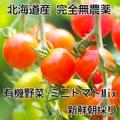 ミニトマトミックス無農薬 1kg