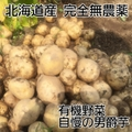 男爵芋 無農薬 26個程度